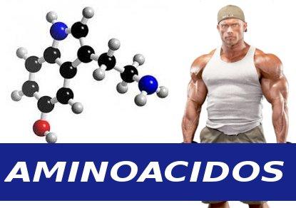 Aminoacidos incrementan masa muscular y fuerza