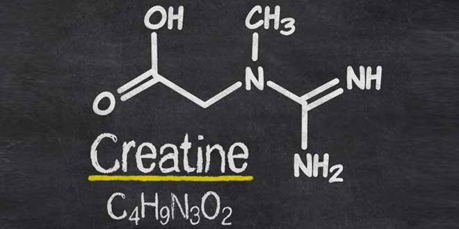 La mejor manera de tomar creatina
