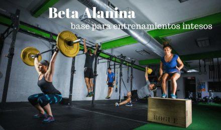 BETA ALANINA: base del entrenamiento intenso de los atletas