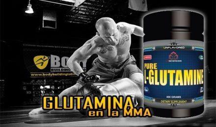 Importancia de la GLUTAMINA en los MMA