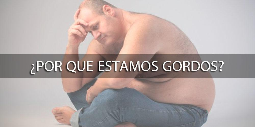 ¿Por que estamos gordos?