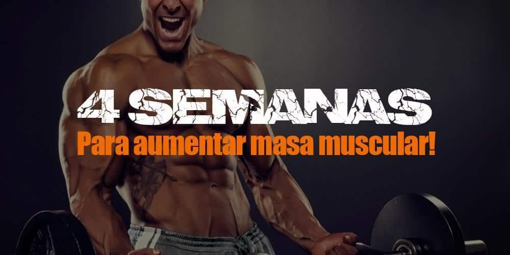 4 semanas para aumentar masa muscular!