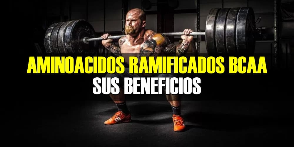 Beneficios de los Aminoácidos Ramificados BCAA