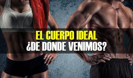 El cuerpo ideal ¿De dónde venimos?
