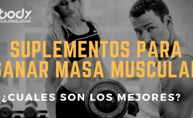 Cuales son los mejores suplementos para ganancia muscular?