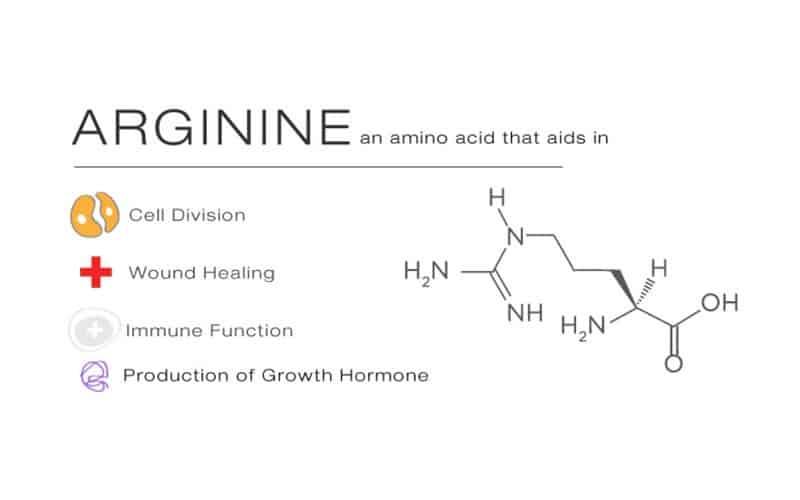 Que es Arginina y para que sirve?