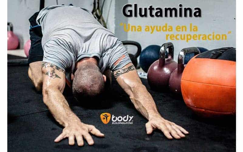 Glutamina – Guía de uso para aficionados y atletas Fitness