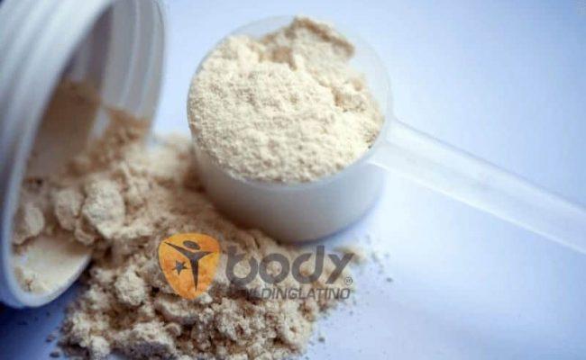 Los Mejores Tipos de Proteína en Polvo y sus usos